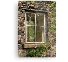 Looking Through The Window... Metal Print