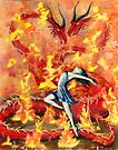 Fire & Ice by Stephen Haning