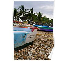 Punta de Mita Poster