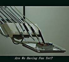 Having Fun Yet? by joan warburton