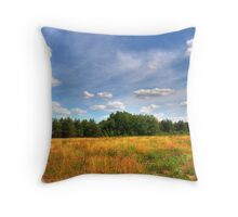 The Atmosphere of a Landscape Throw Pillow