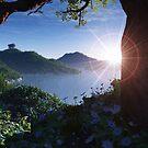 Bay of Tranquility by Steve Davis
