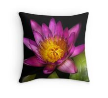 Nymphaea  Ruby - Passion Throw Pillow
