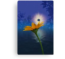 Into the Night Sky Canvas Print
