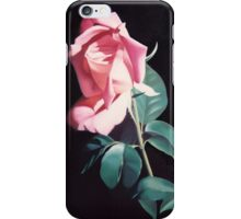 Peach Colored Rose iPhone Case/Skin