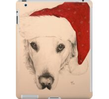 Festive Friend iPad Case/Skin