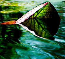 Leaf Catcher © by Mary Campbell