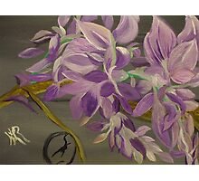 My Wisteria . . . A Fanciful Interpretation Photographic Print