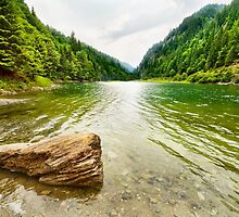 Petrimanu Lake in Romania by naturalis