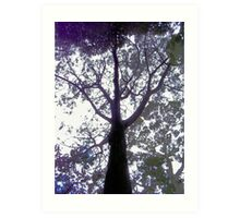 Have you hugged a tree lately? Art Print