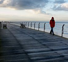 Red Coat by PaulBradley