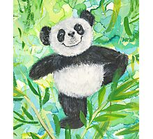 Panda Bear pose Photographic Print