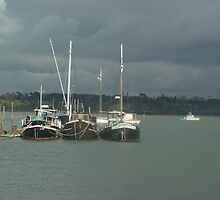 View from Pin Mill by Richard Elston