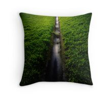 playing fields 3 Throw Pillow