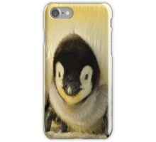 Cute Animals - Penguin iPhone Case/Skin