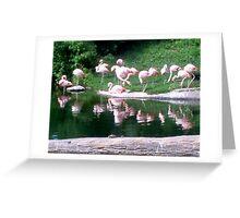 Pink Meeting Greeting Card
