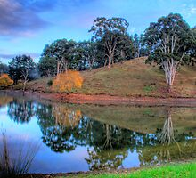 Morning reflections in Oakbank by Elana Bailey