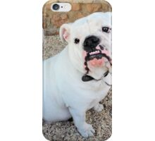 I am so cute and cuddly!! Give me some love! iPhone Case/Skin