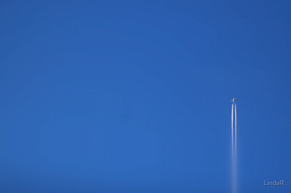 Going Up... by LindaR