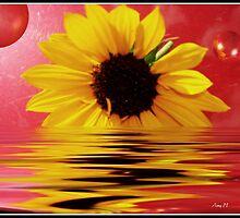 Flaming Flower by AmySplash