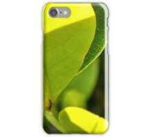 The neon of green leaves in morning light iPhone Case/Skin