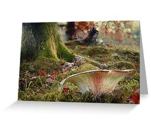 The Faerystool Greeting Card