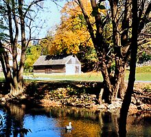 Monocacy creek - Bethlehem by DJ Florek