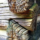 Log Cabin Macro by Sheila McCrea