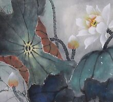 Lotus by Thanh Duong