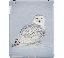 Excuse me? iPad Case/Skin