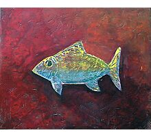 IRRIDESCENT FISH Photographic Print