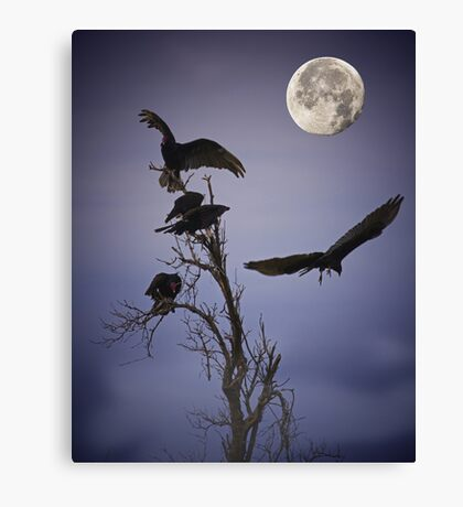 Night of the Solstice Moon Canvas Print