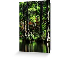 Shine In The Darkness Greeting Card