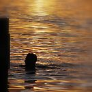 Sunset Swim by Susan Zohn