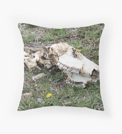 End of the Bison Throw Pillow