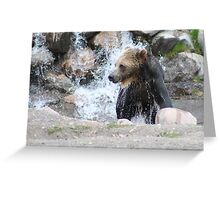 Even Grizzley Bears Bathe Greeting Card