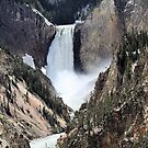 Grand Canyon of Yellowstone Lower Falls by Tranquility