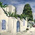 Sidi-Bou-Said by J-C Saint-P