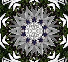 Kaleidoscope by JuliaWright