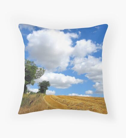 After the Reaping Throw Pillow