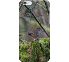 Song Sparrow iPhone Case/Skin