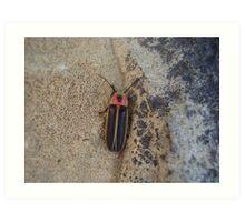 Lightning Bug Art Print