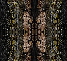 Mossy wood bark pattern by PLdesign