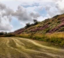 Dirt Road by MsMichelleD