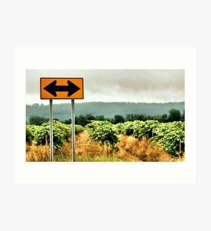 Which Way Art Print