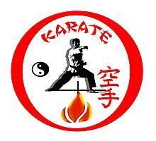 Karate Punch Photographic Print