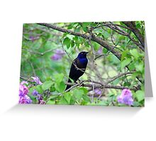 Black Bird Amidst The Lilacs Greeting Card
