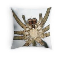 Spider Exoskeleton Throw Pillow