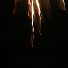 4th of July (Fireworks 3) by Jeff  Ryan