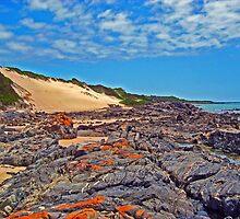 Colourful rocky coastline near Tomahawk by Mark Whittle